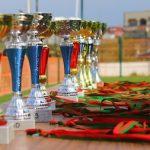 trofeos y copas económicos
